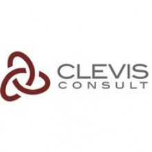 CLEVIS Consulting